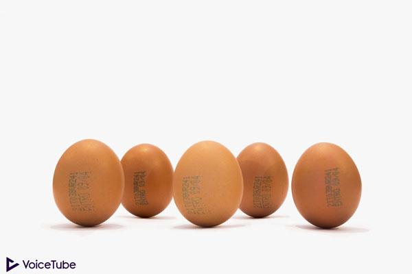 balancing eggs for dragon boat festival